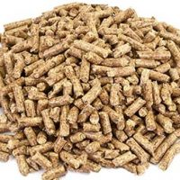 Wood Pellet Exports Hit Record High in 2015