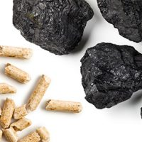 Could Biomass and Coal Be Energy's New Odd Couple?