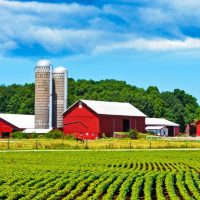 Biomass Industry Trade Officials Encourage Energy Funding in 2018 Farm Bill