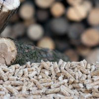 Achieving Maximum Value for Biomass Utilization