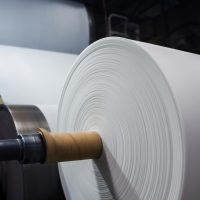 2019 Projections: Pulp and Paper Industry Market Growth