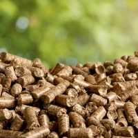 Biomass Capacity and Generation Both Go Up in Canada
