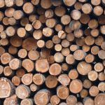 Three Degrees of Burn: Optimizing Wood Yards for Biomass Operations