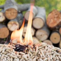 Biomass Power Capacity to Increase in 2018-2019