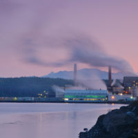 Increasing Pulp Mill Profitability by Reducing Process Variability