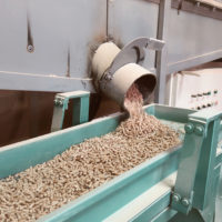 The Pellet Sector of Biomass is Thriving: Pellet Exports for February and March