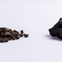 Converting from Coal to Biomass: A Case Study