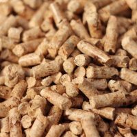 How Advanced Wood Pellets Could Change the Game for Coal-to-Biomass Conversions