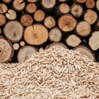 Biomass Incentives Continue from the USDA