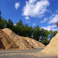 Maine Biomass Industry Under Evaluation from State Leaders