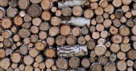coal-to-biomass conversion